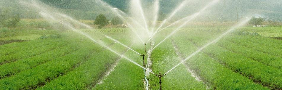 Produtos para Irrigação por aspersão